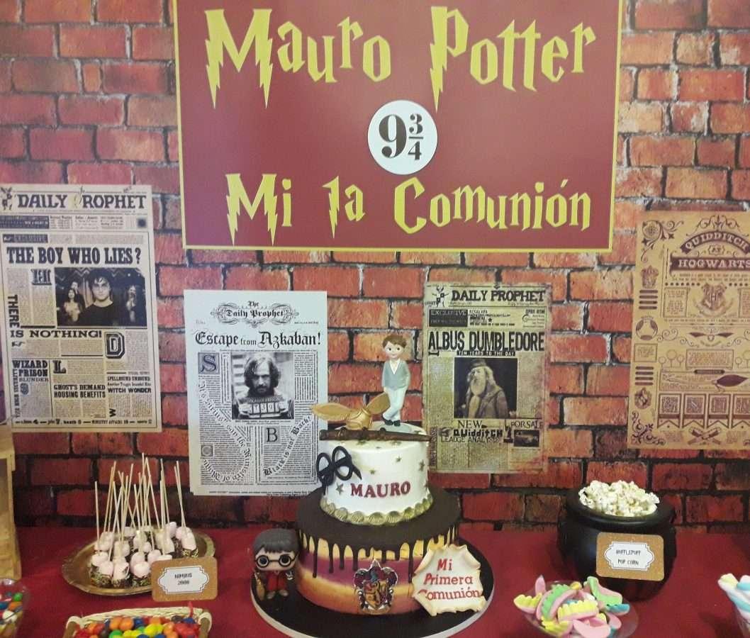 fiestas temática harry potter, fiestas de cumpleaños harry potter, animaciones infantiles barcelona, comuniones barcelona animación, fiestas harry potter barcelona, animaciones harry potter para cumpleaños en barcelona