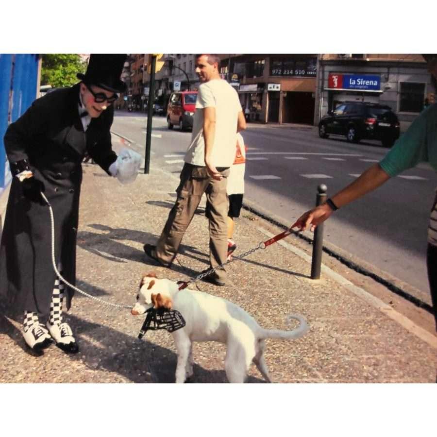 actividades para ayuntamientos, actividades para ayuntamientos barcelona, actividades para ayuntamientos girona, campañas para ayuntamientos, campañas cívicas para ayuntamientos, campañas cívicas sobre perros, campañas publicitarias, convivir con perros, acciones cívicas para ayuntamientos, animaciones itinerantes en barcelona, animación itinerante en barcelona, animacion para concienciar, servicios par ayuntamientos, campañas cívicas para ayuntamientos, campañas cívicas, civismo